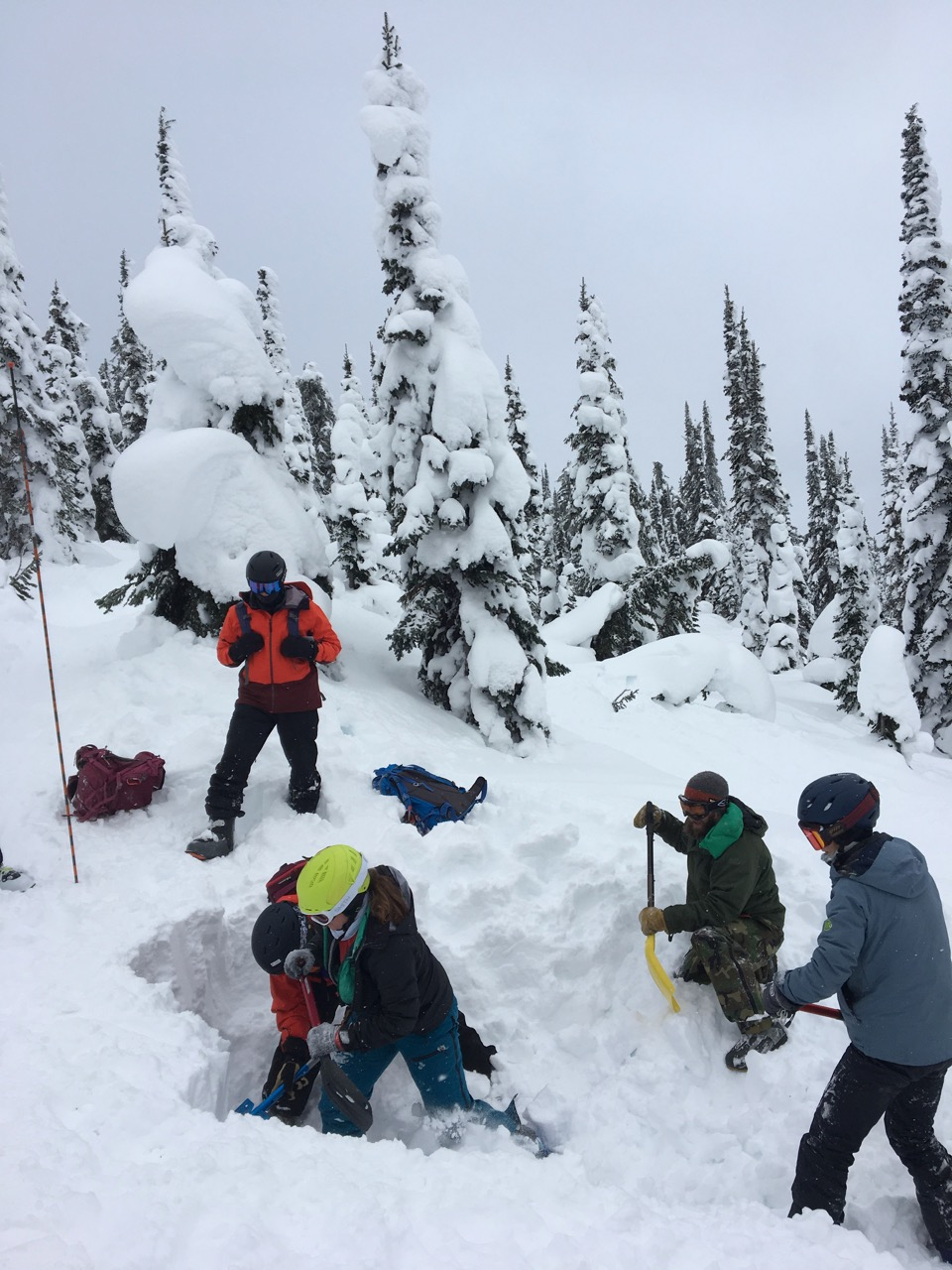 Flathead Avalanche Training